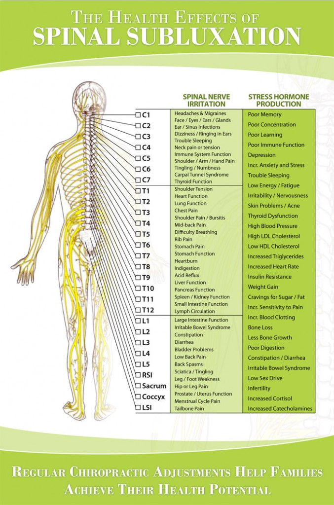 Nerve chart hunter chiropractic wellness centre